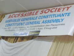 elections,inclusive, society,people with disability